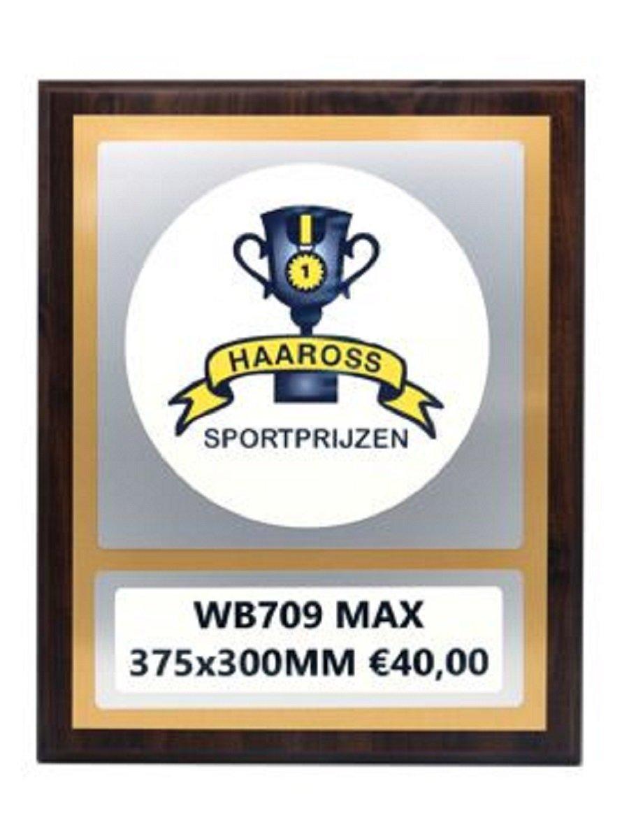 WB709 MAX €40,00